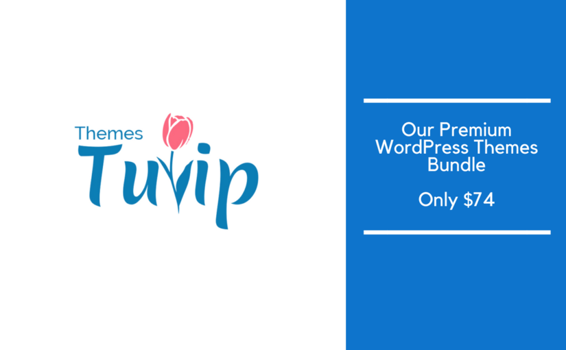 3 WordPress Themes bundle